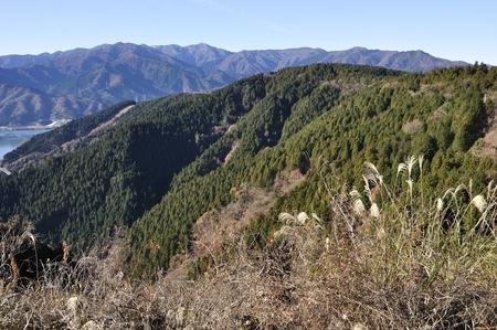 南山 (ナムサン) から丹沢の山々 の景色