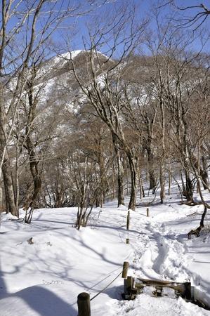 大丸森タワーの道から山へ