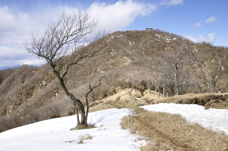 Tanzawa mountains in the snow