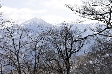 Mount Hiru from Cypress hinokiboramaru