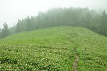 Jockey Club-River Mountain Mist road