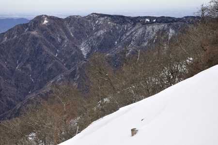 Cypress-Dong round of snow from the ?? mountains and the Princess: