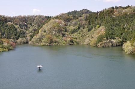 Green Castle Lake 免版税图像