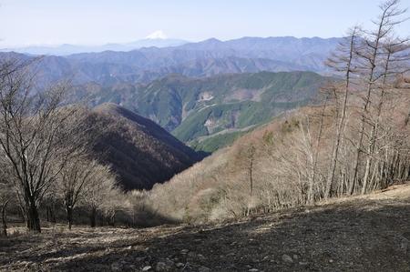 Hawk-a view from Mt. Fuji and the great bodhisattva-Ridge Suyama
