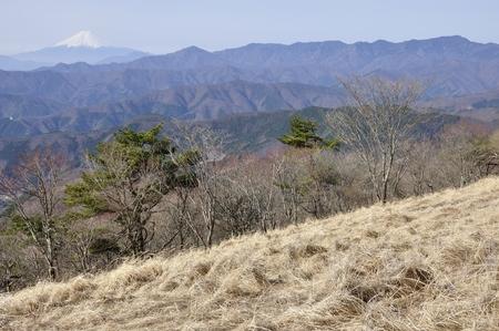 Hawk-Suyama panoramic Mt. Fuji and the great bodhisattva-Ridge 版權商用圖片
