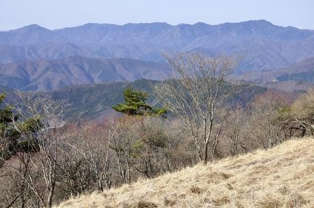 Great bodhisattva-Ridge