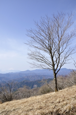 Ishio root climbing road Grove and Mt. Vista