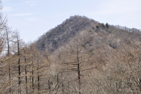 Hawk-Suyama mountain view