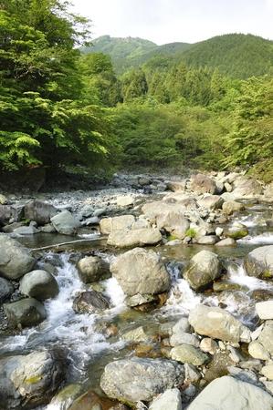 View of the fresh green Hakuba ridge from Hayato river