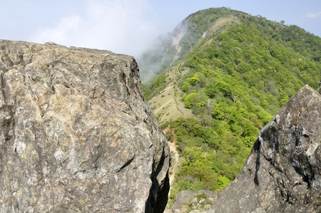 A fresh green leafy mountain peeping out from the rock peak of Oniga Rock 写真素材