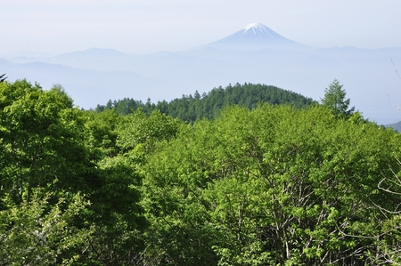 Mt. Fuji mountain nature view. Stock Photo
