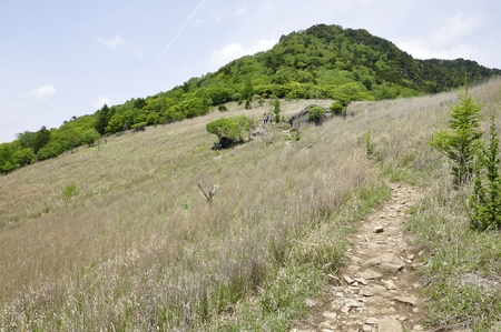 Daisuke mountain of green and Kaito's fan