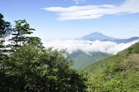 Fuji Natsuyama