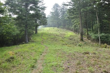 Mountain path of the firefighting belt of Takikoyama