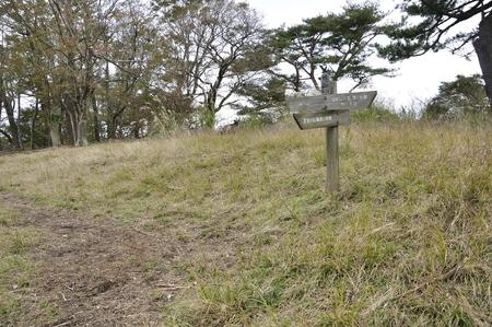 ?? meadow Фото со стока