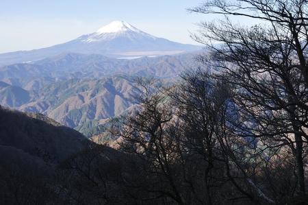 Late autumn morning Fuji from Cypress hinokiboramaru Фото со стока