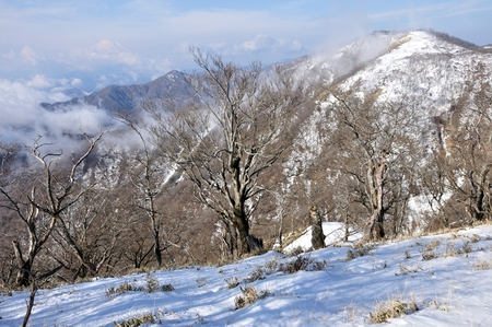 Winter view from the tanzawa mountains of Banco de Imagens