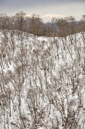 Pot % ridges of snow