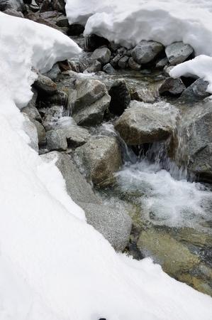 Winter Gora swamp bodies