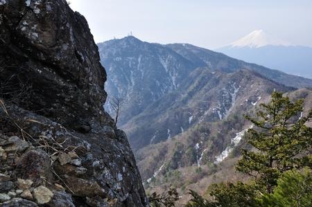 Mt. Fuji and mitsut?ge