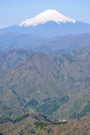 Spring Fuji review