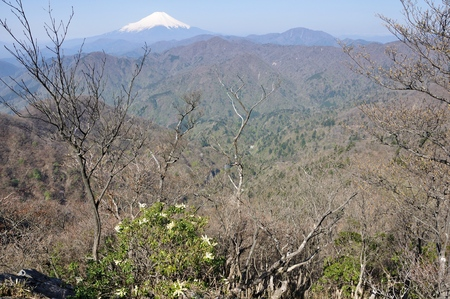 Andromeda and Mount Fuji