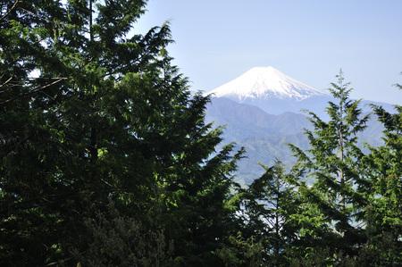 Kuki mountain than Mount Fuji.