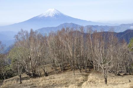 Wild goose month belly sliding mountain than Mount Fuji. 免版税图像