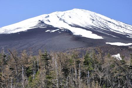 Fuji mountain 写真素材
