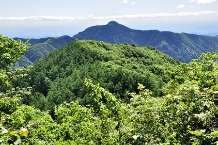 View from the Imperial mountain OTAKE 版權商用圖片