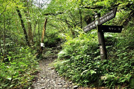 Okumusashi Barnoori-yama's Kanto Fureai Road 写真素材