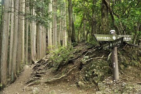 Okumusashi Iwano ori-yama Iwatake Stone Kanto Fureai Road