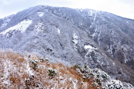 Tanzawachi View of the Snowy Sanno Tower