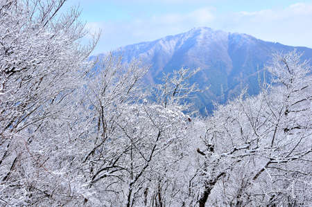 Tanzawa: Oyama from the Sanno Tower with Snow Scenery