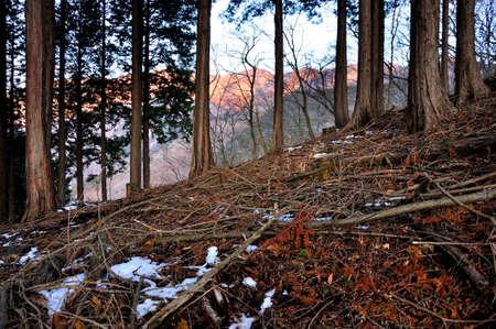 Tanzawa: Mt. Tonotake of the Morning Fire 写真素材