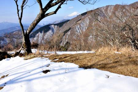 Mt. Fuji from the top ridge of Tanzawa in winter 스톡 콘텐츠