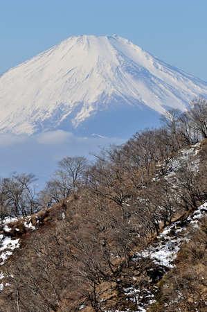 Tanzawa and Mt. Fuji in winter 스톡 콘텐츠
