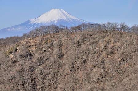 View of Mt. Fuji from Tanzawa