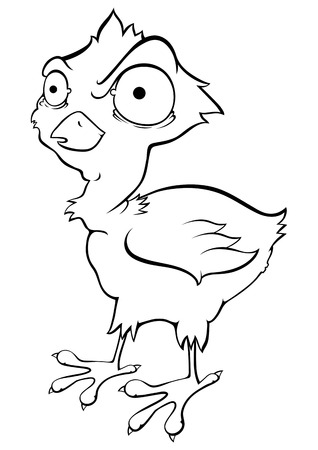 Strange chicken - Illustration Vector