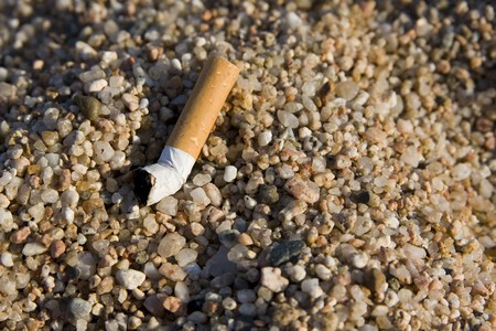 closeup of a cigarette butt found on rocky beach Stock Photo - 4139386