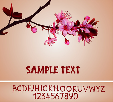 Sakura blossoms background with original alphabet vector illustration with mesh, gradient  Vector