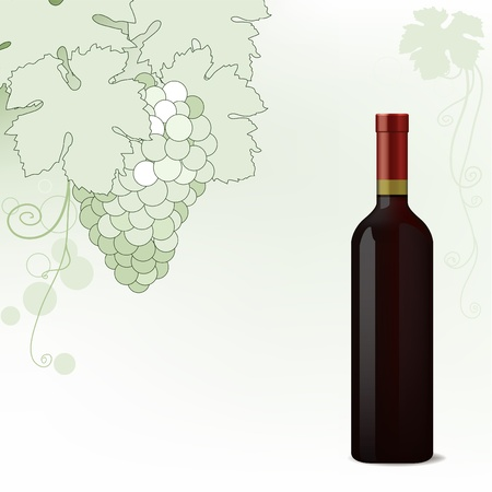 white riesling grape: Red Wine bottle on vine background,