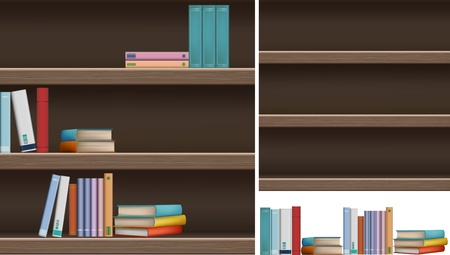 A set of bookshelves and books  Vector
