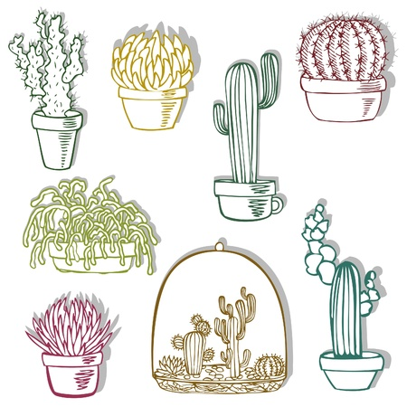 Collection of the doodles cactus stickers.  Stock Vector - 10562698