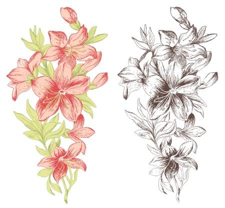 Floral Ornament im Barock-Stil. Hand gezeichnet Rosen. Illustration