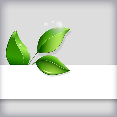 Abstract ecological background with blank copyspace and green leaves   Vector