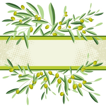 Olive and olive tree branches with empty copyspace. Isolated.  Illustration