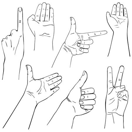 Collection of hands on diferent positions, outline illustration Vector