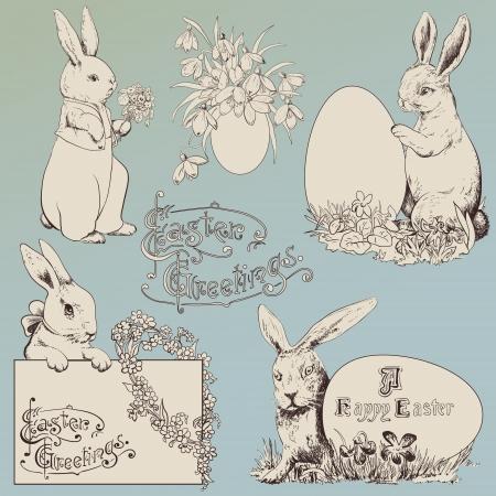 dibujo vintage: Conejo de Pascua establecido. Dibujado a mano ilustraciones