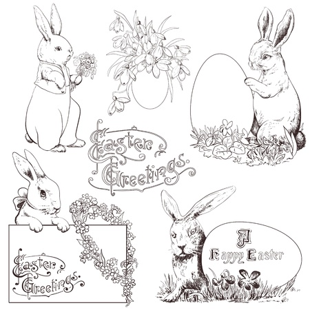 Easter bunny set. Hand drawn monochrome illustration isolated in white. Vector